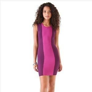 BCBG Aliza Color Block Dress